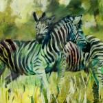 zebras öl/leinw. 100x130cm